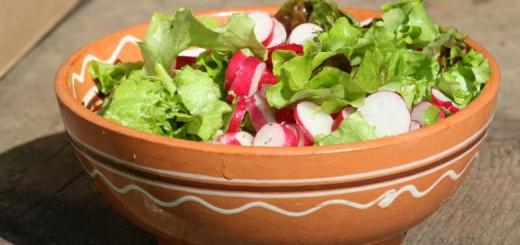 bolokis salati