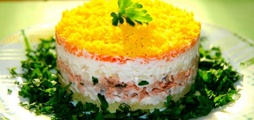 salati-mimoza